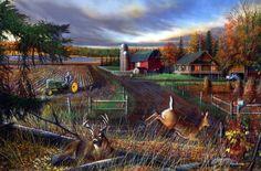 kevin-daniel-dream-farm
