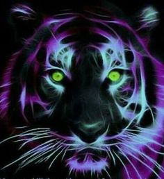 Tiger fractal
