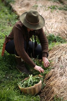Free Online Foraging Resources // from the Chestnut School of Herbal Medicine