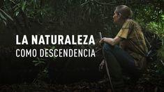Una pareja vive durante casi 30 años en un bosque para salvar la flora y la fauna de la región. Esta historia es un gran ejemplo de cómo podemos ayudar a nuestra planeta a sobrevivir.  Suscríbete a nuestro canal de eventos en vivo: https://www.youtube.com/user/ActualidadRT?sub_confirmation=1  RT en Twitter: https://twitter.com/ActualidadRT RT en Facebook: https://www.facebook.