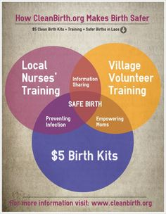What CleanBirth.org Does, Venn Style #babyshowerhostessgifts Baby Shower Hostess Gifts, Baby Shower Favors, Laos, Mothersday Cards, Infant Mortality, Get Educated, Mother And Baby, Mom Blogs, A Team