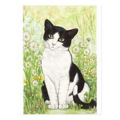 Black and White cat with daisies Postcard Have a daisy! #flowers #garden #nature #botanical #pattern #sunflowers #sunflower #floral #style #art #mothersday #mothersdaygift #mothersdayidea #giftsforher