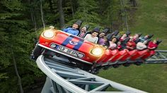 Busch Gardens Williamsburg Unveils New Attractions