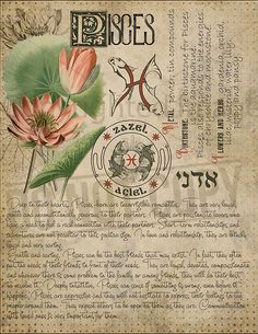 7 pages set about PISCES Astrological Sign Correspondences. They are an ideal addition to your own Wicca Book of Shadows. Astrology Zodiac, Astrology Signs, Zodiac Signs, Astrological Sign, Pisces Sign, Astrology Numerology, Numerology Chart, Magic Herbs, Herbal Magic