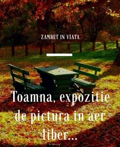 Outdoor Furniture, Outdoor Decor, Park, Quotes, Quotations, Parks, Qoutes, Manager Quotes, Outdoor Furniture Sets
