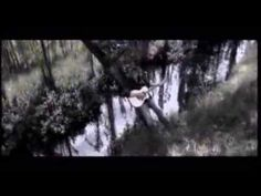 Hart se spoor - Dozi Hart, Afrikaans, Good Music, Singers, Music Videos, Singer, Afrikaans Language