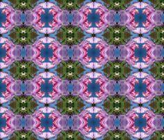 Sweet pea - Spanish dancer fabric by moirarae on Spoonflower - custom fabric  #Spoonflowerwrapper