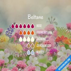 The ultimate essential oil blend software! Create your aromatherapy blends or search through our extensive list. Easily find what blends you can make based on the oils you have. Essential Oil Scents, Essential Oil Diffuser Blends, Essential Oil Uses, Young Living Essential Oils, Beltane, Elixir Floral, Diffuser Recipes, Doterra Essential Oils, Pink