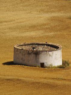 La Passionaria: Photo