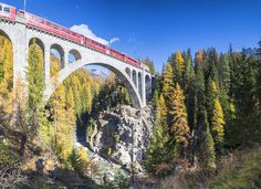 Switzerland for nature lovers - Lonely Planet: Autumn train ride through Switzerland's scenic Engadin region © Roberto Moiola / Sysaworld / Getty Images