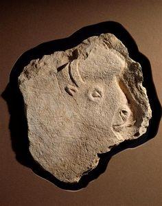 Cave Tailleboug, tête de bison sculptée sur bloc, Musée à Saint Germain. Magdalénien.  Le Roc aux Sorciers à Taillebourg: à la suite de l'effondrement du plafond de l'abri, l'art pariétal de la cave Taillebourg nous est parvenu en mille morceaux. Seules les sculptures d'un bison et de sujets indéterminés sont encore en place. On décompte aujourd'hui près de 350 blocs imposants (de l'ordre de 300 kg) et plusieurs 100° de blocs de petite dimension issus du plafond de la cave Taillebourg.