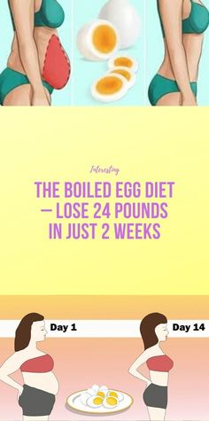 Health Discover The Boiled Egg Diet – Lose 24 Pounds In Just 2 Weeks Health And Fitness Expo, Health And Wellness Center, Health And Fitness Articles, Health And Nutrition, Health Facts, Health Tips, 1000 Calorie Workout, Exercise To Reduce Thighs, Bodybuilding Diet