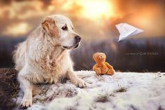 fly! by Gabi Stickler on 500px