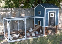 Build Your Own Chicken Coop - A story of chickens -