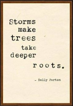 Storms make trees take deeper roots.  Doly Pardon #inspiration
