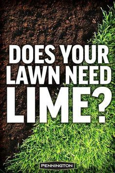 In many parts of the country, adding lime to your lawn is as essential as mowing it.