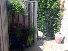 My patio 2017 Patio, Simple, Heart, Plants, Life, Yard, Terrace, Flora, Plant