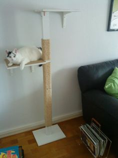 IKEA Hackers: Kitty cat's Claw Pole.  Materials: Antonius shelf, Ekby Stödis brackets, Hessum doormat, screws, metallic L-brackets, white paint, pole, jute rope, floor protectors, small nails.