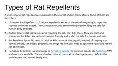 Types of rat repellents #RatRepellent #Soberbio #HerbalRatRepellent