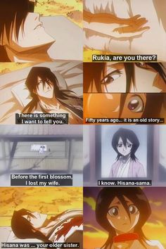 Byakuya Confession...from Confessions in the twilight one of my favorite chapters.