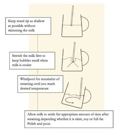 How to steam milk for barista coffee. Check out our guide!