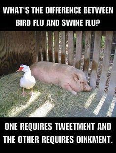 -Clean jokes swine flu bird flu Clean jokes swine flu bird flu See it Bad Dad Jokes, Funny Jokes For Kids, Silly Jokes, Kid Jokes, Stupid Jokes, Puns Jokes, Jokes And Riddles, Funny Puns, Funny Stuff