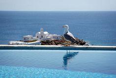 Hostelbay.com Travel Blog - The ultimate guide to Greek Island Hopping#Mykonos#Santorini#Ios#Zakynthos#Rhodes#Creete#Ikaria#Samos#Hydra#Aegina#greek_islands