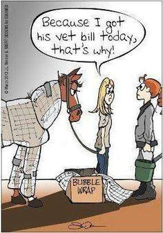 Equestrian problems...