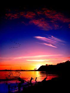 Daydream by ~TchaikovskyCF