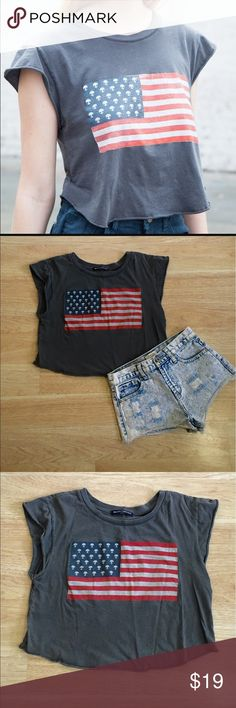 EUC Brandy Melville American Flag Cropped Tee EUC Brandy Melville American Flag Cropped Tee  Size: OS - True to Size  Measurements: 33 inch bust, 34 inch waist, 16 inch length, 2 inch sleeves, and 8 inch arm holes.   Fabric Content 👗 Unknown  Features ✨ •Comfortable and soft  •Quality material that's made to last •American Flag design with aliens as the stars •Rounded, Cropped hem.  •Cut off muscle top sleeves  •EUC condition   Get 15% off when you buy 3+ items plus save on shipping! 💸…