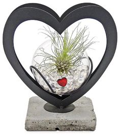 Luludi Living Frames Duet - contemporary - Indoor Pots And Planters - LOVE YOUR VALENTINE