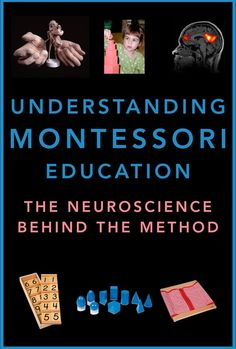 Watch Montessori Education Explained by Pediatric Neuropsychologist Dr. Steve Hughes Online | Vimeo On Demand