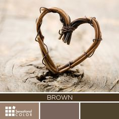 Heart made of dried vine and brown color palette