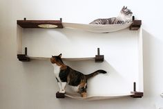 CatastrophiCreations Fabric Cat Maze - Multiple-level Hammock Lounger - Handcrafted Wall-mounted Cat Tree Shelves