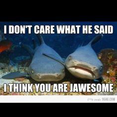 #shark love...