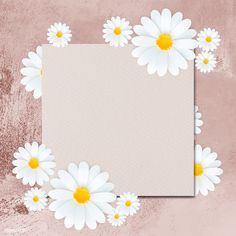 White daisy flower frame on pink background template illustration | premium image by rawpixel.com / Minty Leaves Wallpaper Iphone, Daisy Wallpaper, Flower Background Wallpaper, Framed Wallpaper, Flower Backgrounds, Artsy Background, Light Blue Background, Background Powerpoint, Background Templates