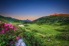 Red flowers and red mountains She Was Beautiful, Red Flowers, Dusk, Sunrise, Earth, Explore, Mountains, Places, Travel
