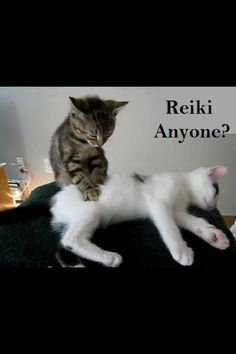 Reiki anyone?