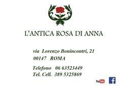 ECCO  COME  TROVARCI --  Bed and Breakfast  L'Antica Rosa di Anna  -  Via Lorenzo Bonincontri, 21  -  Tel.  3895325869  -  Idoneo per disabili - Non esistono barriere architettoniche