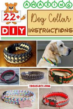 22+ Amazing DIY Paracord Dog Collar Instructions | Patterns-   Paracord Dog Coll... -  22+ Amazing DIY Paracord Dog Collar Instructions | Patterns-   Paracord Dog Collar Instructions Image  –  e58.decarationart… We know how cute your dog looks in her costume. But there are some things to bear in mind before deciding on the best outfit for the dog. Nowadays, many people decorate their pets on special events such as for instance New Year's Eve or holidays. Choosing dog clothes is often fun…