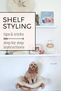 Shelf Styling Tips &