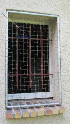 Les 8 Meilleures Images De Protection Louna En 2018 Balcony Cat