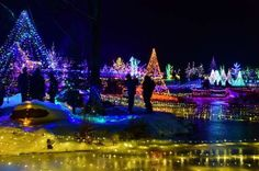 Visit the Coastal Maine Botanical Gardens to experience the largest light display in Maine: Gardens ... - Coastal Maine Botanical Gardens