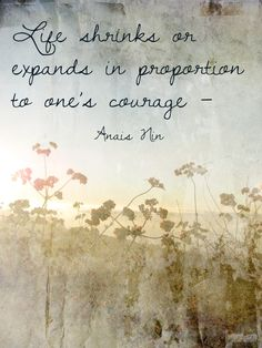 Life shrinks or expands in proportion to one's courage. -Anais Nin