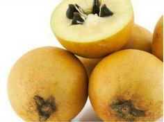 Sapoti, nativo da América Central, seu fruto é  marrom e carnudo. É  comum no nordeste brasileiro.