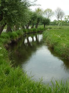 All sizes | Swalmen, River with Willows | Flickr - Photo Sharing!