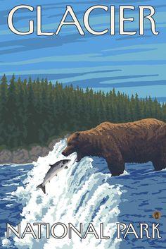 Print (Glacier National Park, Montana - Bear Fishing in River - Lantern Press Artwork)