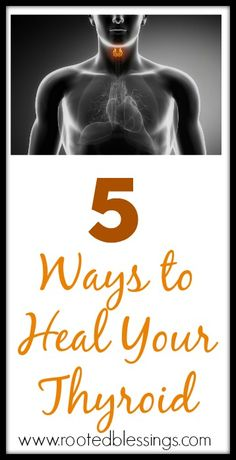 Share Tweet Pin Mail Follow Some sources say that 200 million people worldwide suffer from thyroid disease. Hypothyroidism or an under-active thyroid is most ...