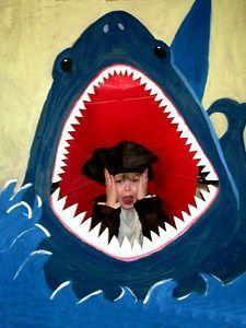Shark HEAD IN HOLE BOARD / face board