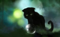 black cat..mysterious and dreamy